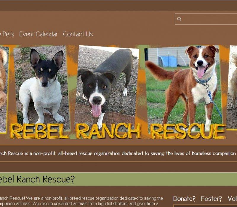 free animal rescue websites animal rescue site portfolio
